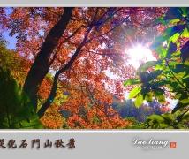 从化石门山的红枫