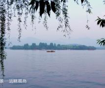 [随拍] 我的第二故乡杭州美丽的西子湖-9P