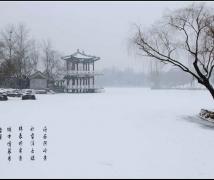 -------------雪景---------------
