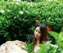 洪湖公园杂图