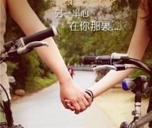 单车情缘-封面