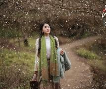 梅花欢喜漫天雪——《寻梅》