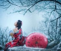 ---白雪红颜---
