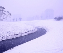 雪中即景----沙湖公园