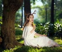 阳光、森林、美女