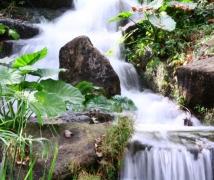 小溪流水。
