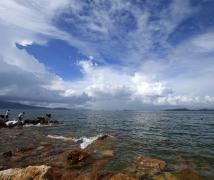 杨梅坑的海