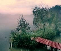 安陵书院的晨雾