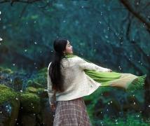 《飞花不是雪,寒梅报春来》