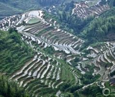 崇义客家梯田系统入选农业部第二批重要农业文化遗产