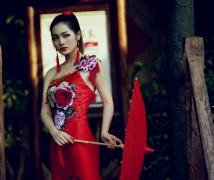 中国红   之    贝壳